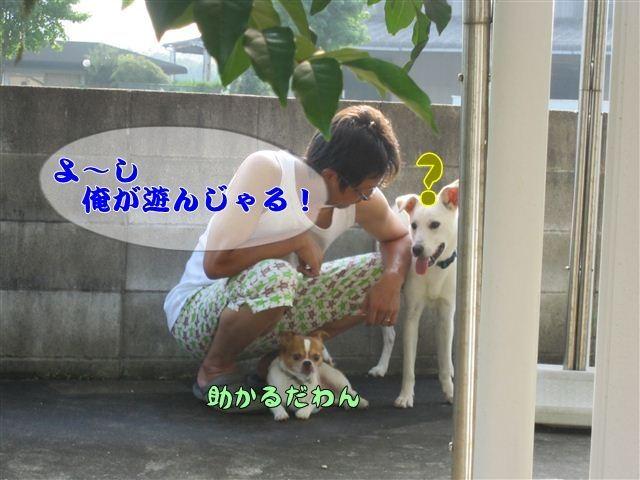 f:id:yasukazu01:20120808170412j:image