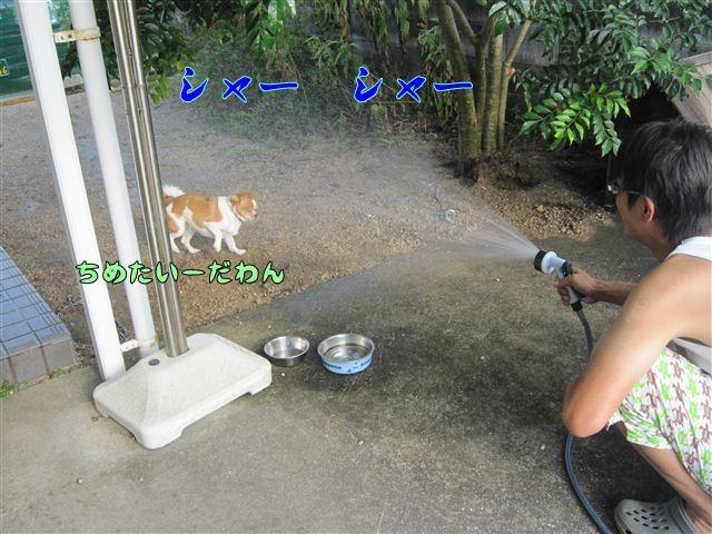f:id:yasukazu01:20120808170704j:image