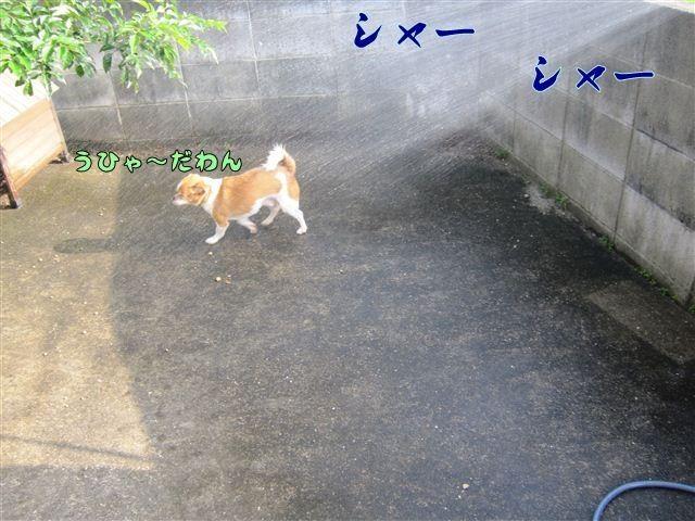 f:id:yasukazu01:20120808170749j:image