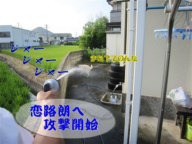 f:id:yasukazu01:20120808170821j:image