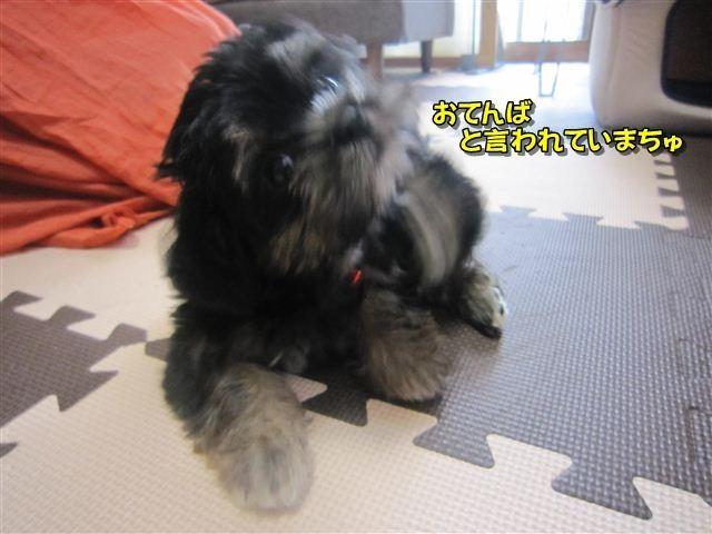 f:id:yasukazu01:20120815101238j:image