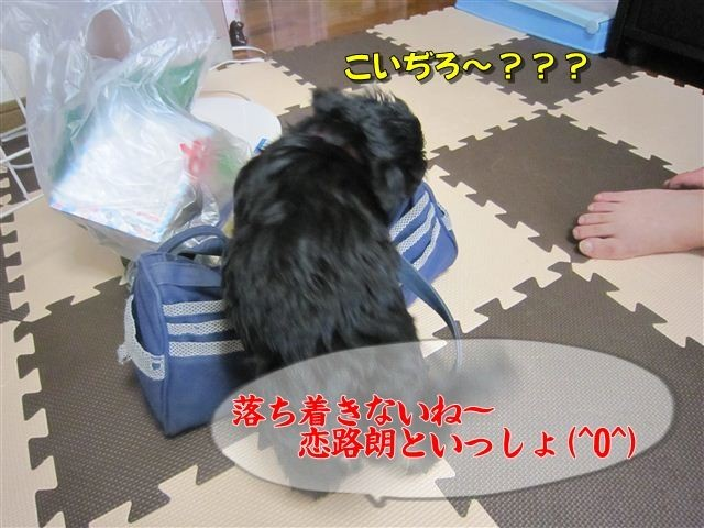 f:id:yasukazu01:20120815102526j:image