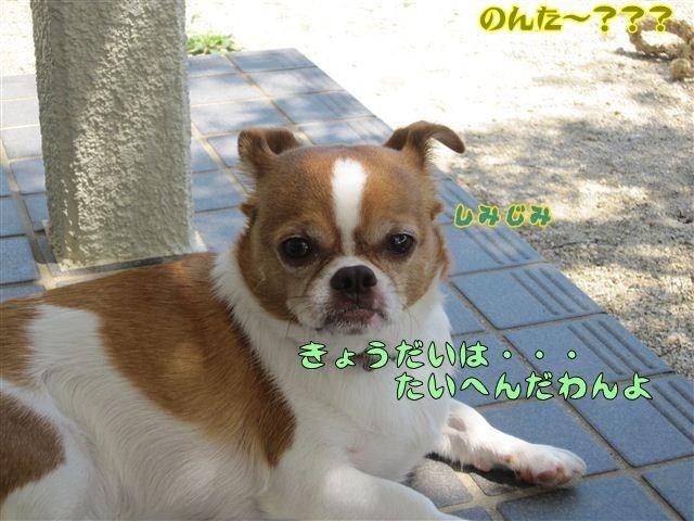 f:id:yasukazu01:20120815132708j:image