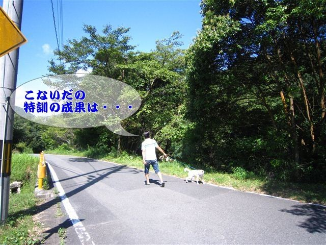 f:id:yasukazu01:20120816102524j:image