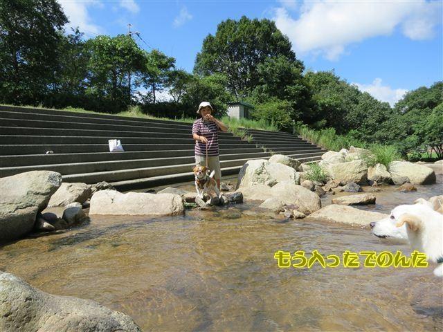 f:id:yasukazu01:20120816102701j:image