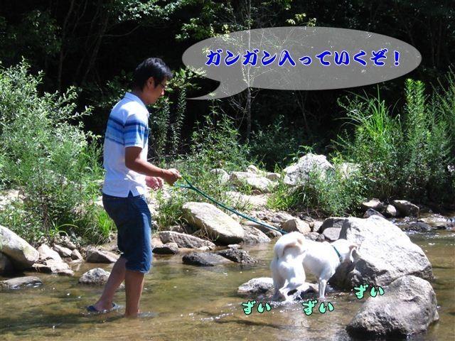 f:id:yasukazu01:20120816102839j:image