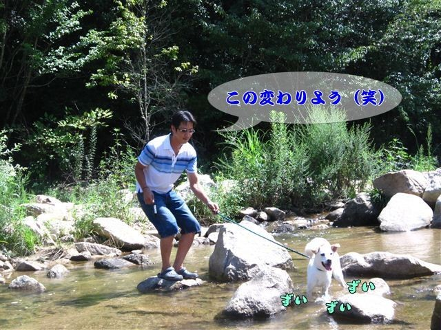 f:id:yasukazu01:20120816102902j:image