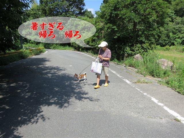 f:id:yasukazu01:20120816103227j:image