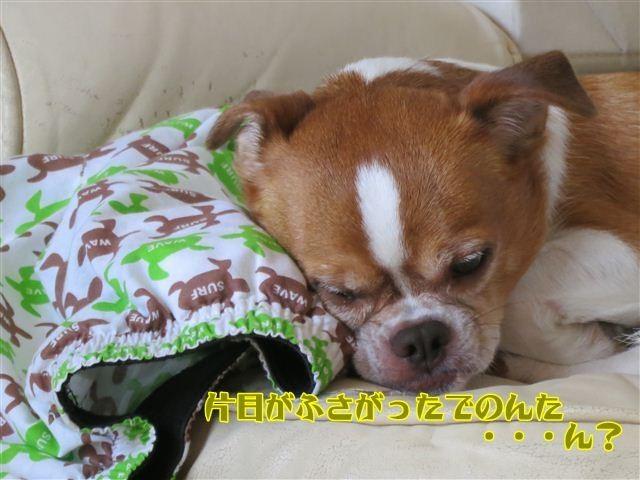 f:id:yasukazu01:20120816121014j:image