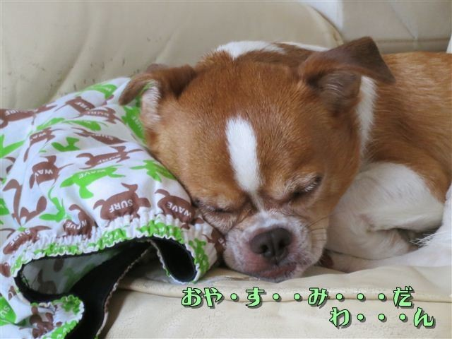f:id:yasukazu01:20120816121020j:image