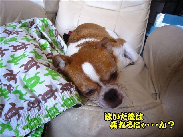 f:id:yasukazu01:20120816123234j:image