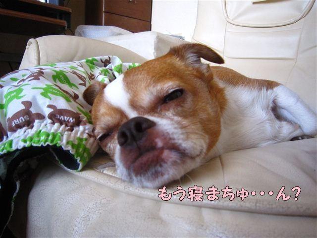 f:id:yasukazu01:20120816123240j:image