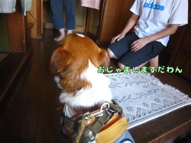 f:id:yasukazu01:20120816163637j:image