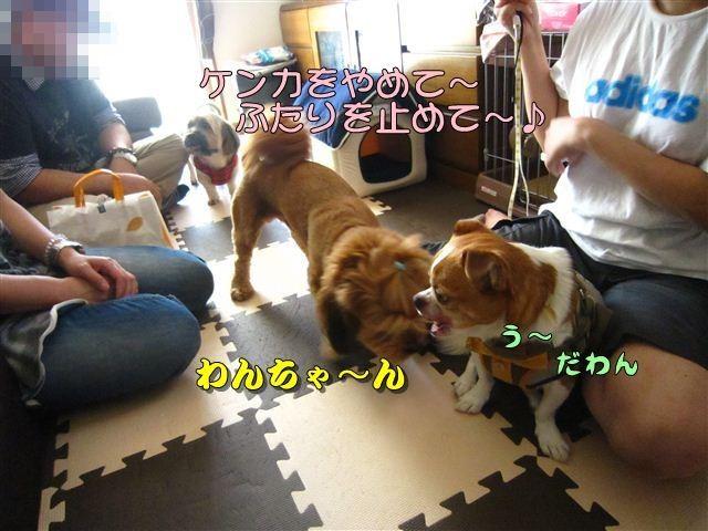 f:id:yasukazu01:20120816164746j:image
