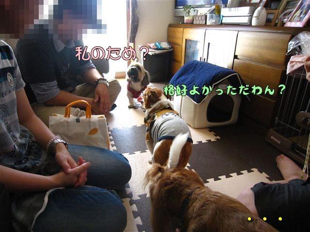f:id:yasukazu01:20120816164759j:image