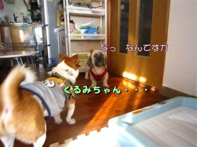 f:id:yasukazu01:20120816165115j:image