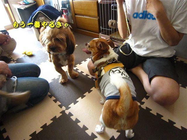 f:id:yasukazu01:20120816165625j:image