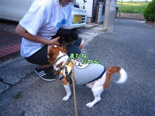 f:id:yasukazu01:20120816173725j:image