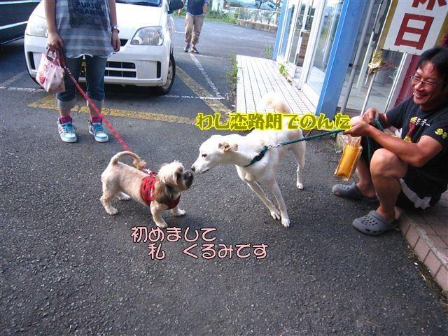 f:id:yasukazu01:20120816174319j:image