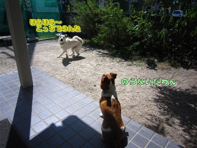 f:id:yasukazu01:20120819102109j:image