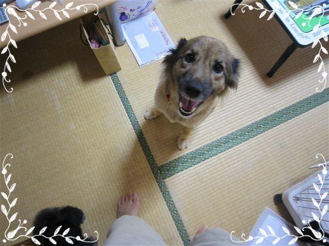 f:id:yasukazu01:20120824153153j:image