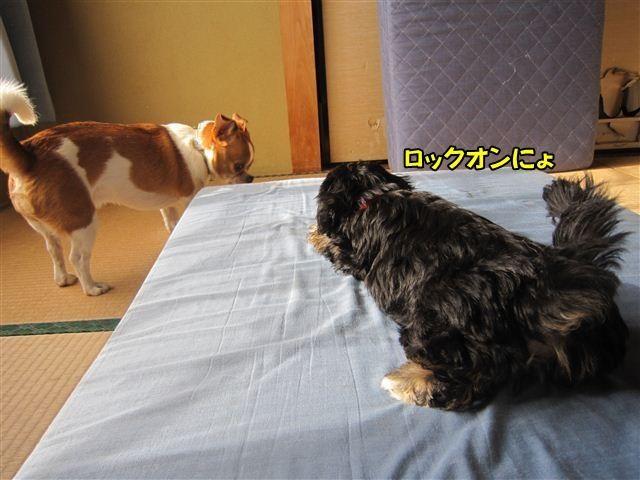 f:id:yasukazu01:20120824164132j:image