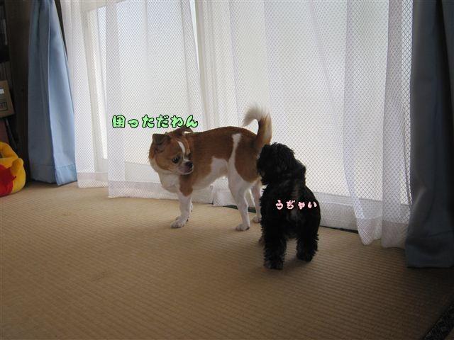 f:id:yasukazu01:20120824164210j:image