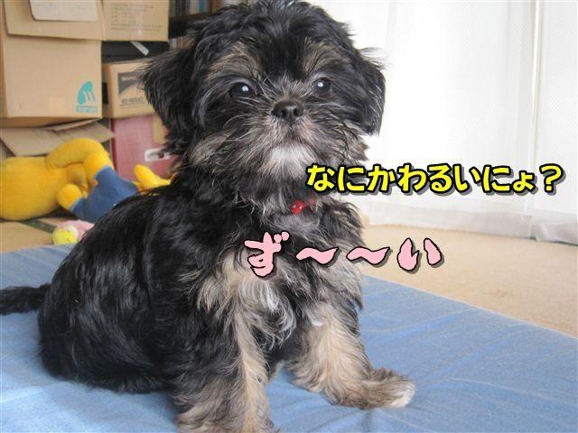 f:id:yasukazu01:20120824164244j:image