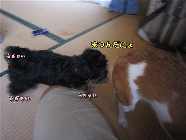 f:id:yasukazu01:20120824164553j:image
