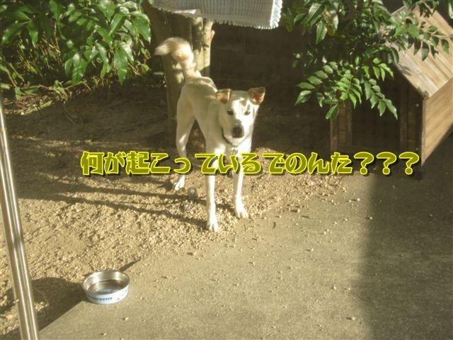 f:id:yasukazu01:20120824172050j:image