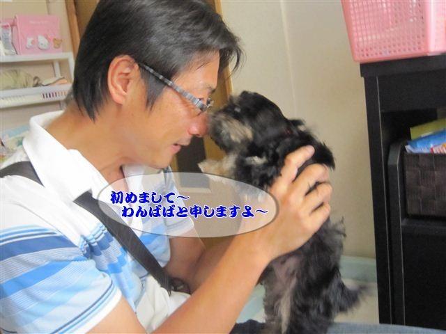 f:id:yasukazu01:20120825130602j:image
