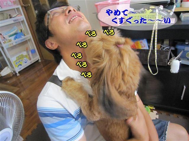 f:id:yasukazu01:20120825133914j:image