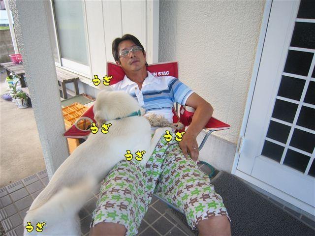 f:id:yasukazu01:20120825173034j:image