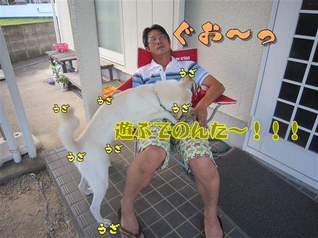 f:id:yasukazu01:20120825173046j:image