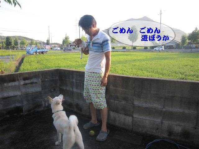 f:id:yasukazu01:20120825180353j:image