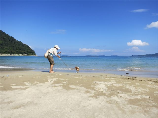 f:id:yasukazu01:20120902102343j:image