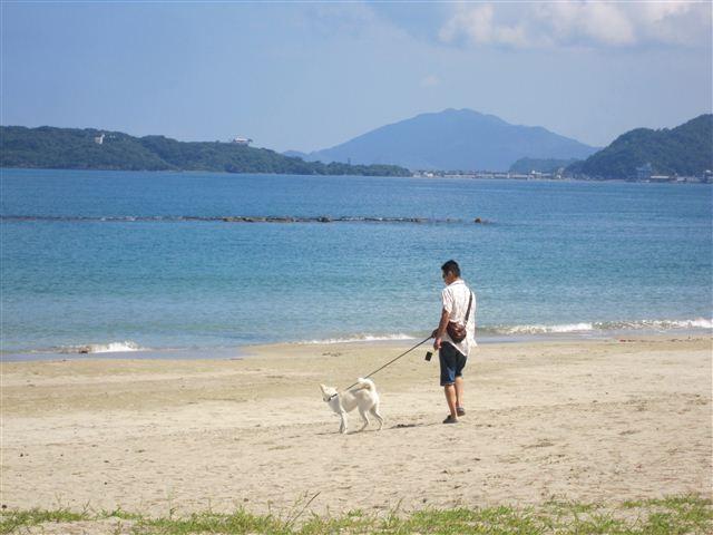 f:id:yasukazu01:20120902102429j:image