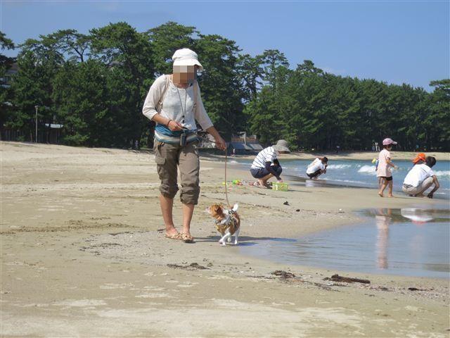 f:id:yasukazu01:20120902103030j:image