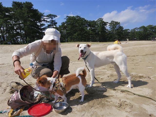 f:id:yasukazu01:20120902103330j:image