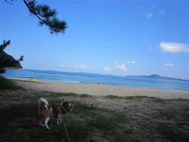 f:id:yasukazu01:20120902104456j:image