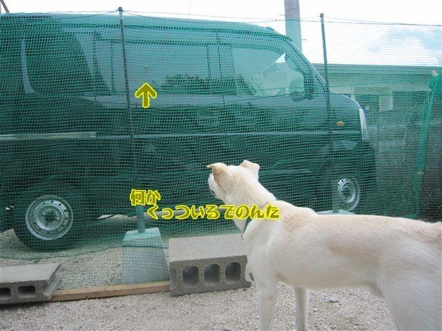 f:id:yasukazu01:20120909104528j:image