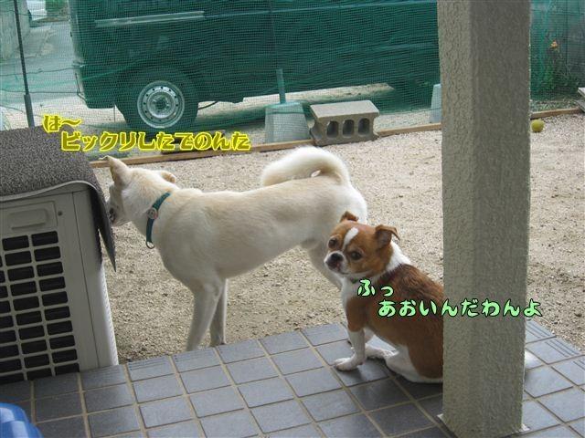 f:id:yasukazu01:20120909112106j:image