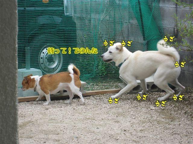 f:id:yasukazu01:20120909113559j:image
