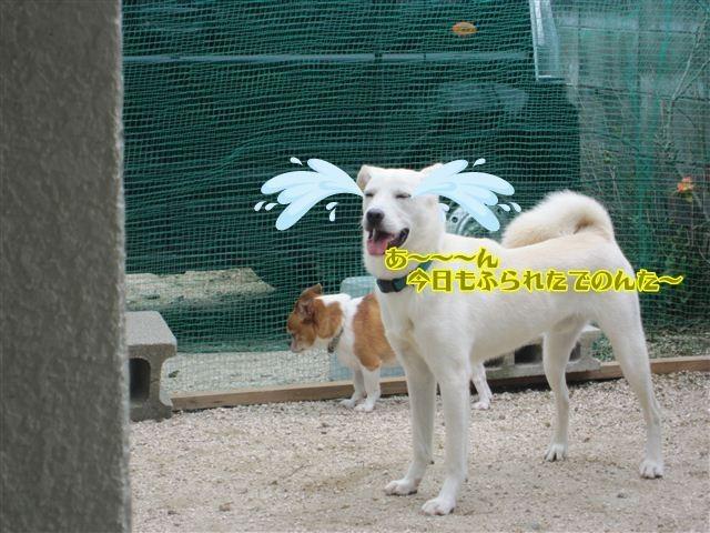 f:id:yasukazu01:20120909113607j:image