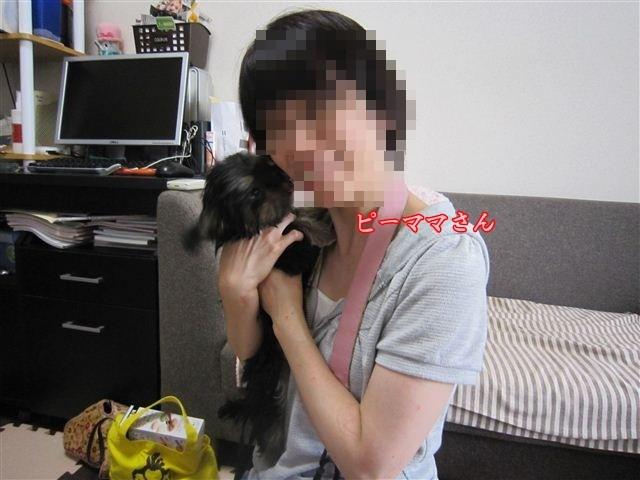 f:id:yasukazu01:20120909142101j:image