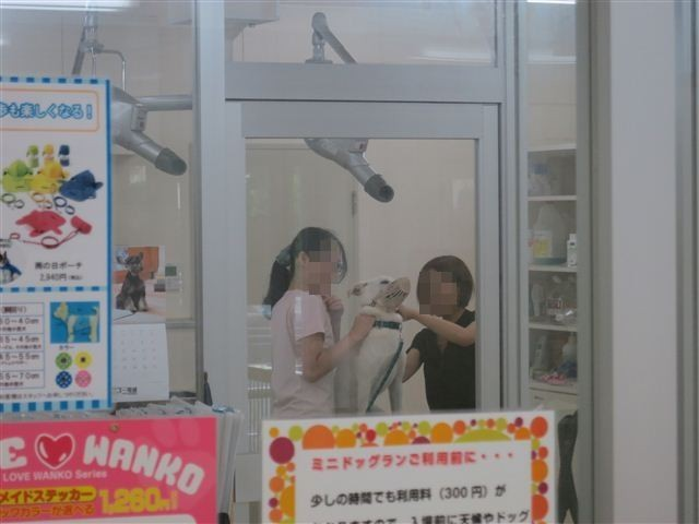f:id:yasukazu01:20120910094928j:image