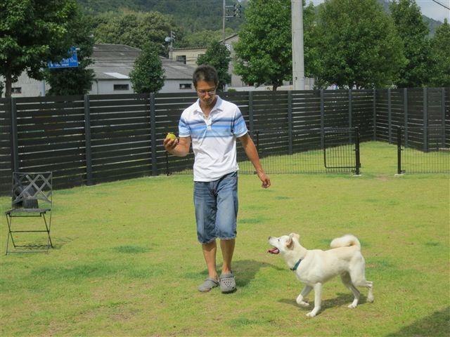 f:id:yasukazu01:20120910103249j:image