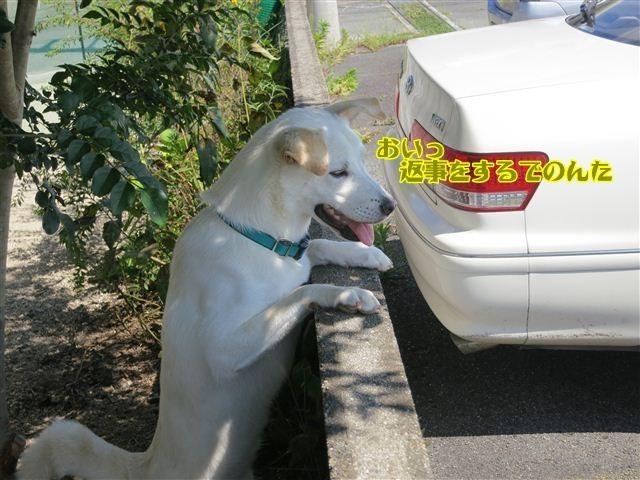 f:id:yasukazu01:20120913134142j:image