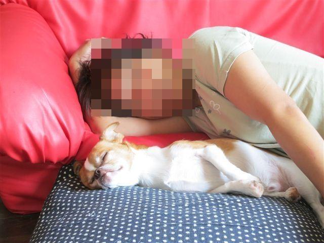 f:id:yasukazu01:20120917100858j:image