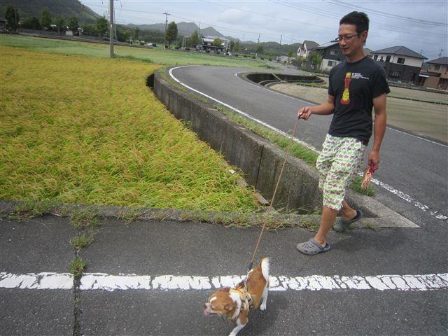 f:id:yasukazu01:20120917115131j:image